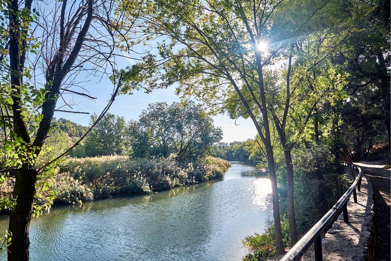 Un paseo por las lagunas del Henares