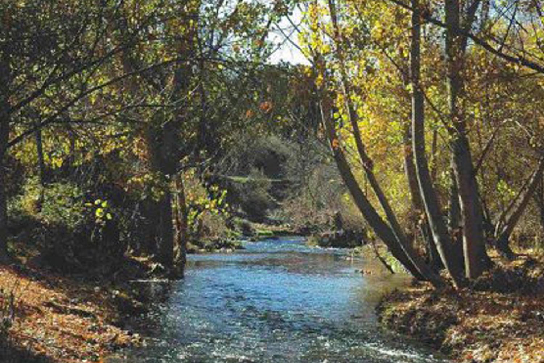Un espacio natural por descubrir: Recorriendo el Parque Regional del río Guadarrama, de la sierra a la campiña