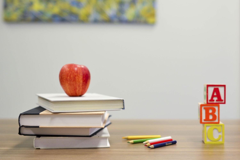 Talleres pedagógicos virtuales